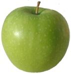Apel Vegetarian