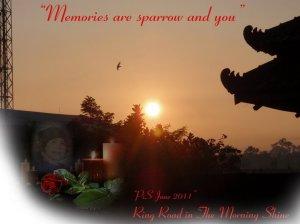 Kenangan adalah burung pipit dan kau